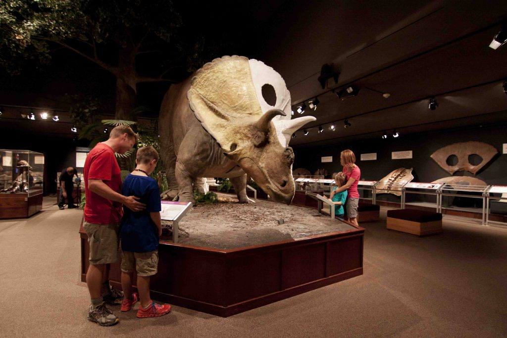 Museum of the Rockies is a renoun museum in Montana's Yellowstone Country