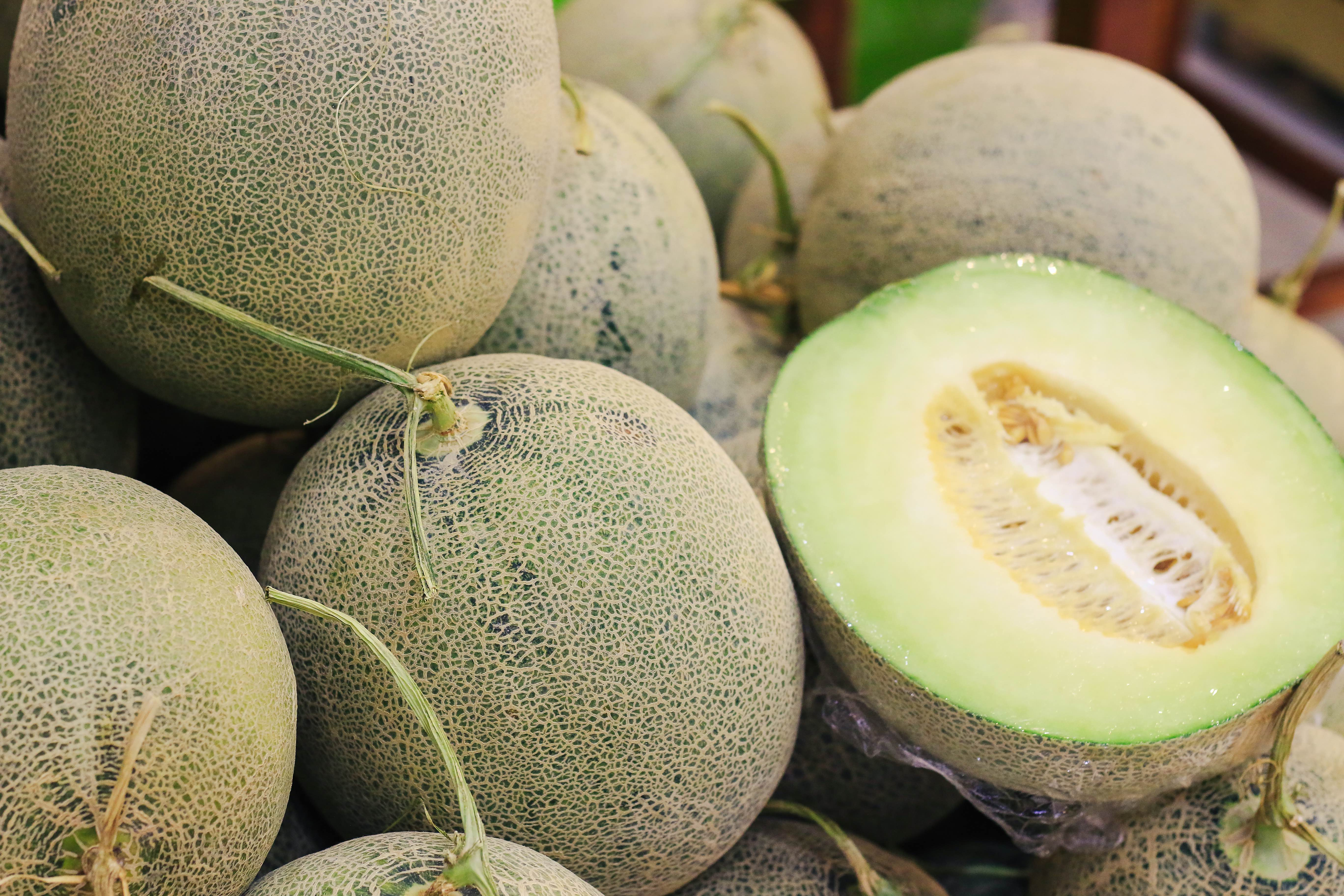 Dixon Melons can be found at farmers markets in Yellowstone Country Montana