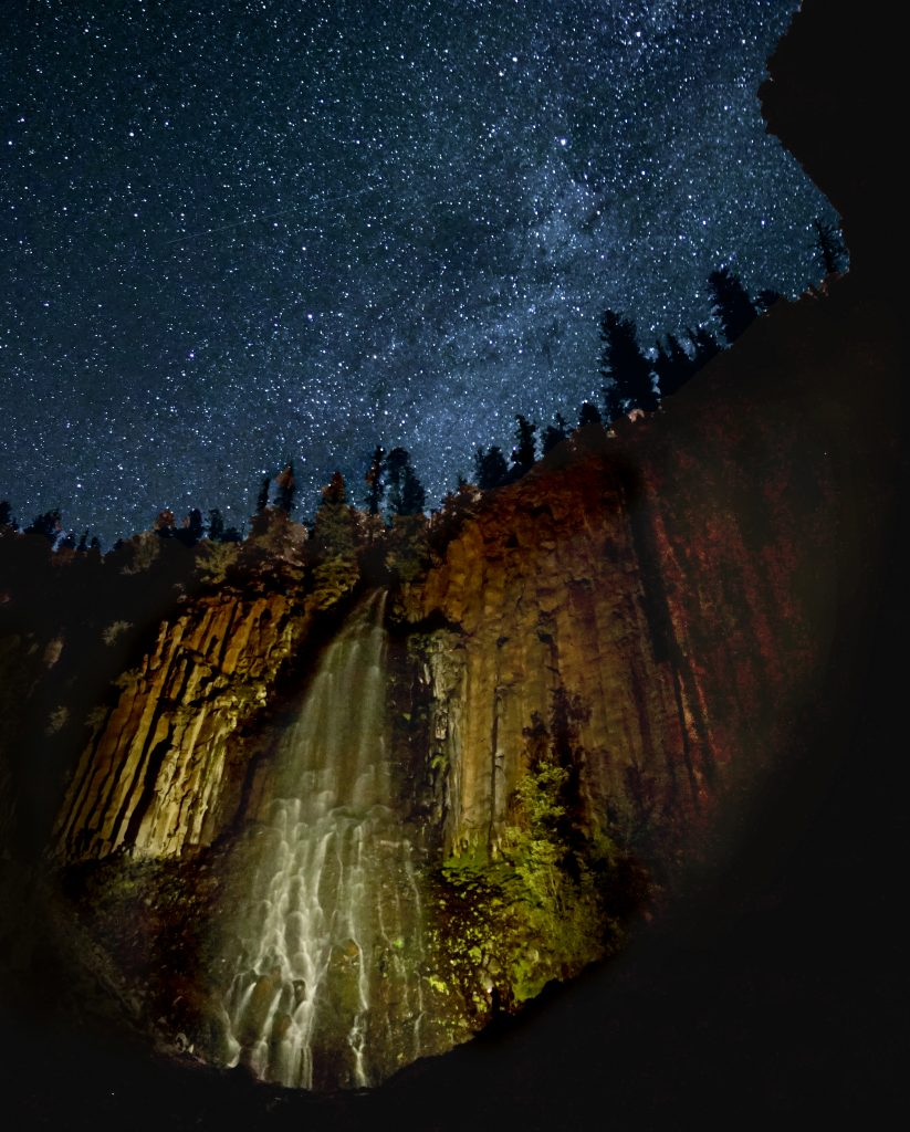 The Enchanted Forest in Yellowstone Country Montana