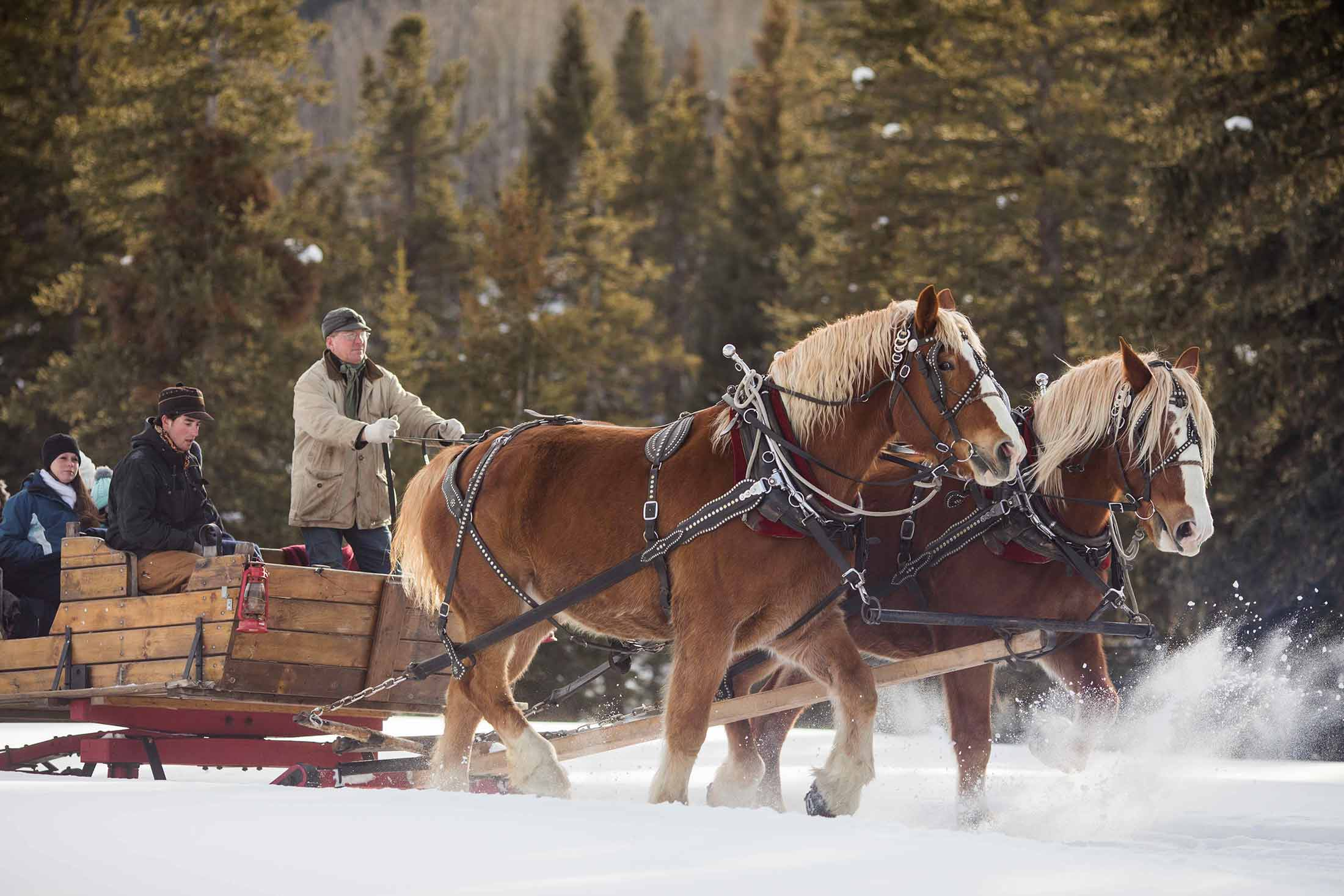 A sleigh ride in Montana's Yellowstone Country