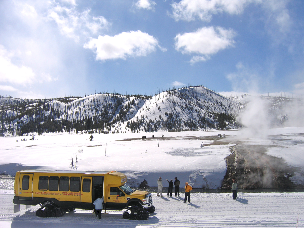 Tour in Yellowstone National Park