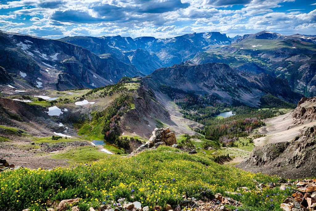 View from 1st switchback west of Gardiner Lake along the Beartooth Highway. Alpine flowers and Mirror Lake in foreground. Beartooth Mtns. and Hellroaring Plateau in background.